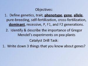 Objectives 1 Define genetics trait phenotype gene allele