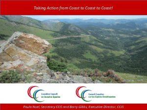 Taking Action from Coast to Coast Paula Noel