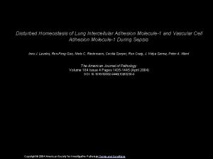 Disturbed Homeostasis of Lung Intercellular Adhesion Molecule1 and