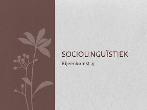 SOCIOLINGUSTIEK Bijeenkomst 4 Bijeenkomst 5 Tweetaligheid 1 Presentatie