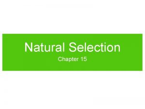 Natural Selection Chapter 15 Natural Selection On the