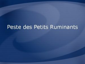 Peste des Petits Ruminants Overview Organism Economic Impact