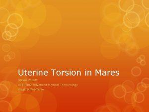 Uterine Torsion in Mares Stevie Willett VETE 402