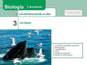 Biologa 2 Bachillerato I LAS MOLCULAS DE LA