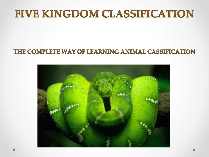 1 Kingdom Monera 2 Kingdom Protista 3 Kingdom