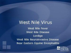 West Nile Virus West Nile Fever West Nile