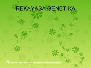REKAYASA GENETIKA Pengertian Teknologi rekayasa genetika merupakan transplantasi