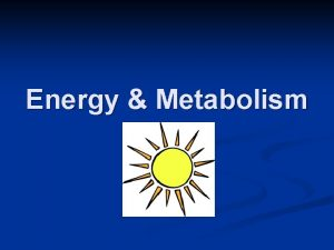Energy Metabolism Energy for life processes Energy is
