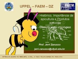UFPEL FAEM DZ II Histrico Importncia da apicultura