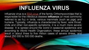 INFLUENZA VIRUS Influenza virus is a RNA virus