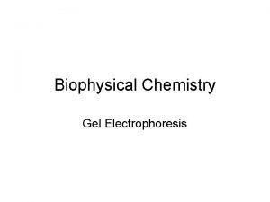 Biophysical Chemistry Gel Electrophoresis Definition Electro Charge Phorsesis