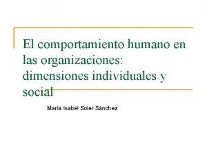 El comportamiento humano en las organizaciones dimensiones individuales