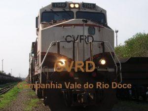 CVRD Companhia Vale do Rio Doce A Companhia