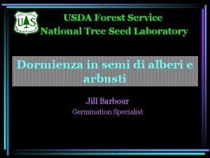 USDA Forest Service National Tree Seed Laboratory Dormienza