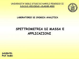 UNIVERSITA DEGLI STUDI DI NAPOLI FEDERICO II S