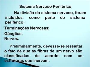 Sistema Nervoso Perifrico Na diviso do sistema nervoso