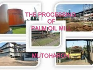 THE PROCESSING OF PALM OIL MILL MUTOHAROH PALM