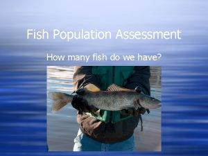 Fish Population Assessment How many fish do we