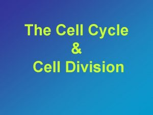 The Cell Cycle Cell Division The Cell Cycle