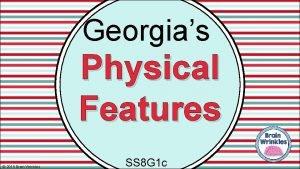 Georgias Physical Features 2015 Brain Wrinkles SS 8