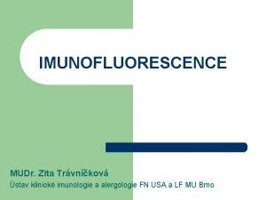 IMUNOFLUORESCENCE MUDr Zita Trvnkov stav klinick imunologie a