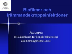 Biofilmer och frmmandekroppsinfektioner sa Melhus IMVSektionen fr klinisk
