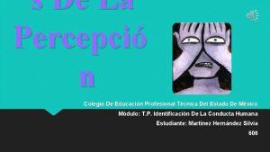 s De La Percepci n Colegio De Educacin