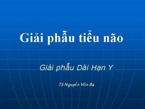 Gii phu tiu no Gii phu Di Hn