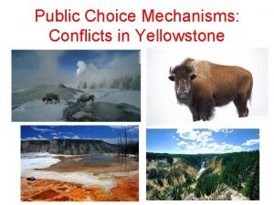 Public Choice Mechanisms Conflicts in Yellowstone Public Choice