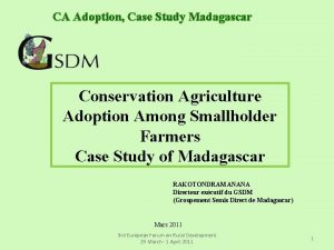 CA Adoption Case Study Madagascar Conservation Agriculture Adoption