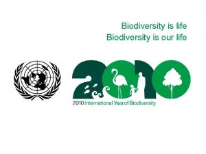 Biodiversity is life Biodiversity is our life Biodiversity
