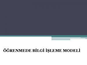 RENMEDE BLG LEME MODEL BLGY LEME KURAMI v