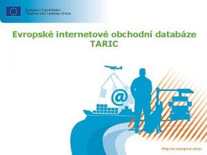Evropsk internetov obchodn databze TARIC Evropsk internetov obchodn
