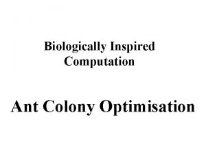 Biologically Inspired Computation Ant Colony Optimisation Swarm Algorithms