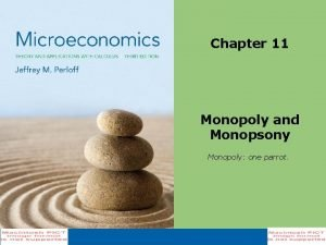 Chapter 11 Monopoly and Monopsony Monopoly one parrot
