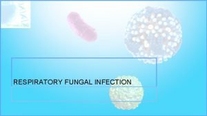 RESPIRATORY FUNGAL INFECTION RESPIRATORY FUNGAL INFECTION Etiology YEAST