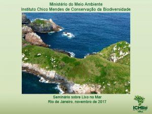 Ministrio do Meio Ambiente Instituto Chico Mendes de
