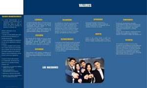 VALORES ORGANIZACIONALES Los valores organizacionales son la conviccin