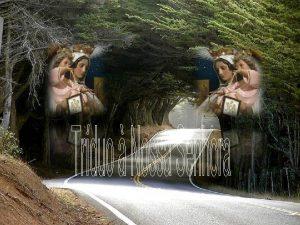 Orao para todos os dias Nossa Senhora do