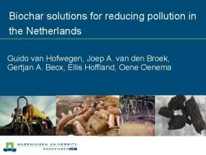 Biochar solutions for reducing pollution in the Netherlands