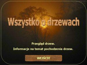 Przegld drzew Informacje na temat pochodzenia drzew WEJCIE