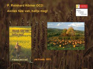 P Reinhard Krner OCD Akinek fle van hallja