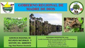 GOBIERNO REGIONAL DE MADRE DE DIOS GERENCIA REGIONAL
