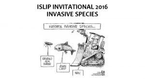 ISLIP INVITATIONAL 2016 INVASIVE SPECIES STATION 1 INVASIVE