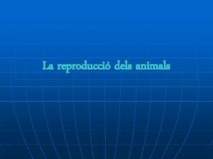La reproducci dels animals La reproducci sexual La