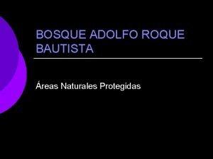 BOSQUE ADOLFO ROQUE BAUTISTA reas Naturales Protegidas PANORAMA