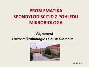 PROBLEMATIKA SPONDYLODISCITID Z POHLEDU MIKROBIOLOGA I Vgnerov stav