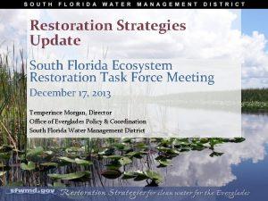 Restoration Strategies Update South Florida Ecosystem Restoration Task
