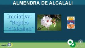 ALMENDRA DE ALCALALI Iniciativa Reptes dAlcalali Editado para