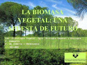 LA BIOMASA VEGETAL UNA APUESTA DE FUTURO Lab